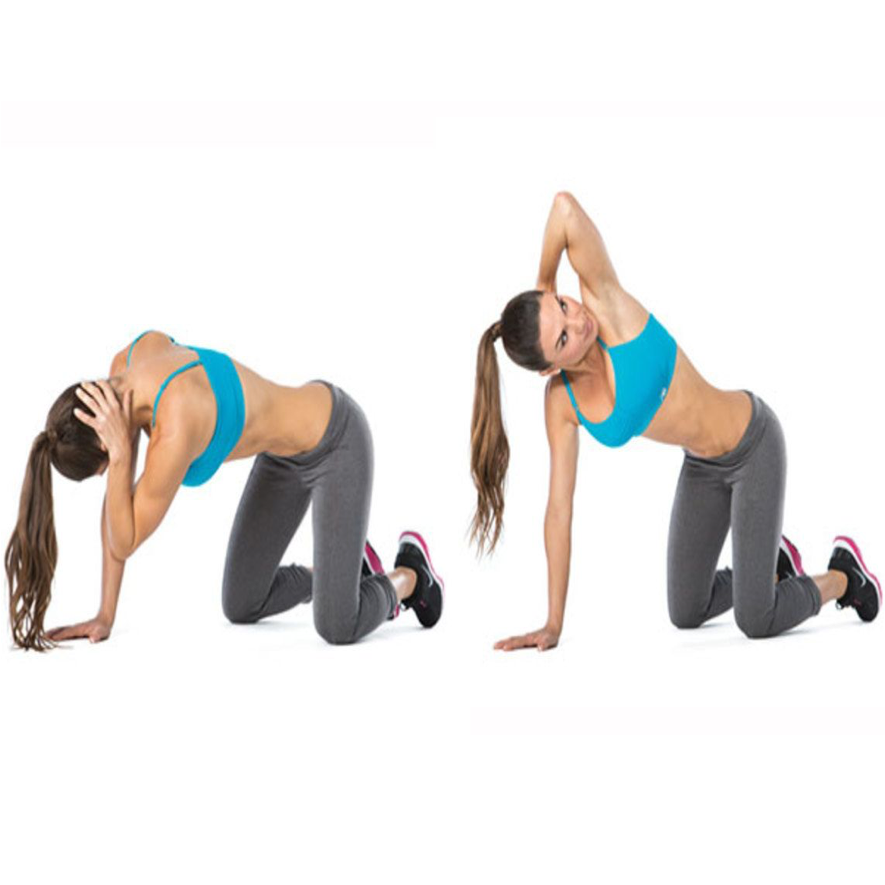 Upper Back Rotations